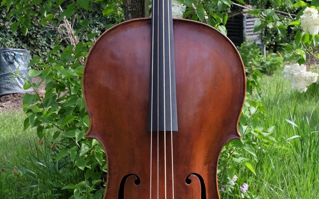 A german baroque cello around 1790